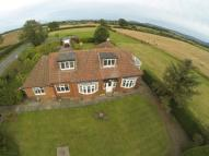 5 bedroom Equestrian Facility house in Campion Lane...