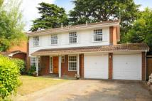 property in Surbiton