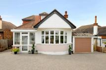Bungalow in Surbiton