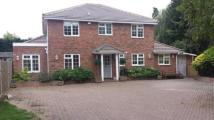 Detached home in Surbiton