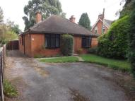 Bungalow for sale in Bramley, Tadley...