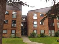 Flat for sale in Shrublands Court...