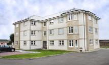 2 bed new Flat for sale in St. Meddans Street...
