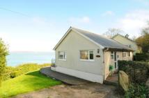 Bungalow for sale in Pier Lane, Cawsand...