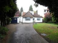 Bungalow for sale in New Haw, Addlestone...