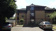 Flat for sale in Mitre Court, Broomhill...
