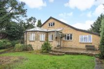 6 bed Bungalow in The Glade, Shirley...