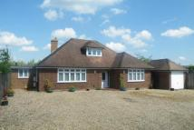 Bungalow for sale in Worplesdon, Surrey