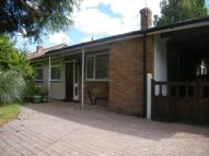 Bungalow for sale in The Street, Dilham...