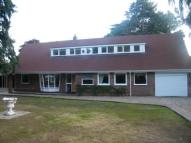 Bungalow in The Avenue, Wroxham...