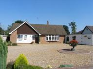 Bungalow for sale in Charles Close, Wroxham...