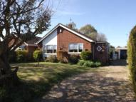 Bungalow for sale in Hardingham Road, Hingham...