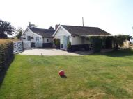 Bungalow for sale in Manson Green, Hingham...