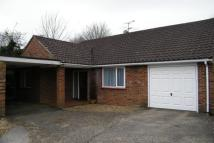 3 bed Bungalow to rent in Lindford