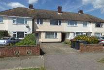 GOLDINGTON house to rent