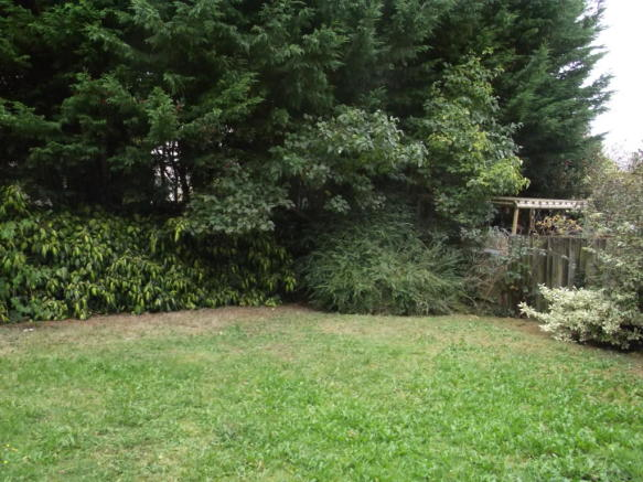 Tivoli Road Bton - garden
