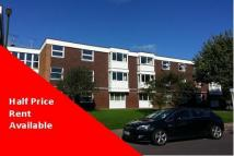 3 bed Apartment to rent in Chichester