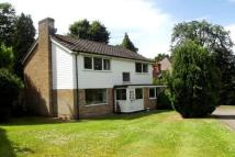 4 bedroom Detached property in Hawksview, Cobham