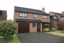 4 bedroom property to rent in Fulmar Close, Mickleover...