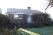 North Close Bungalow to rent