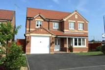 4 bed Detached property to rent in Haddon Close, Heanor...
