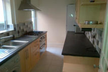 3 bed semi detached house to rent in Swinburne Street, Derby