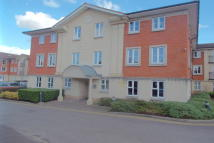 property to rent in Springly Court, Grimsbury Road, Kingswood, Bristol, BS15