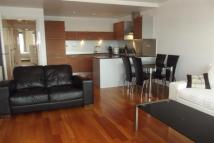 Ingram Street Apartment to rent