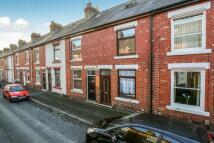 3 bedroom property to rent in Avenue Grove