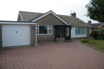 3 bed Bungalow to rent in Bernard Crescent...