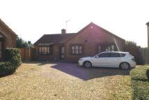 Detached Bungalow to rent in Veltshaw Close, Heacham