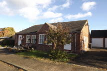 Bungalow to rent in Scotts Close...
