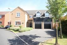 5 bed Detached house in Maple Close, PULLOXHILL...