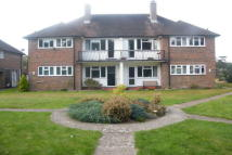 Reigate Apartment to rent