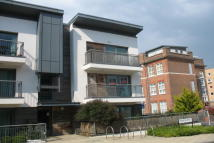 Apartment to rent in Ted Bates Road, Central