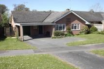 Bungalow to rent in The Covert, Romsey