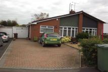 2 bed home to rent in Derrington              ...
