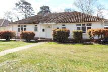 Bungalow in Moorhill Gardens...