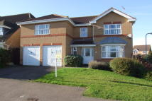 Meadow Sweet Road Detached property to rent