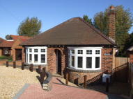 Detached Bungalow to rent in Woodland Road, Rushden...