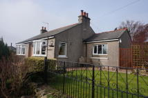 Detached Bungalow in Broom Close...