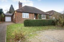 Bungalow in Ashcombe Road, RH4