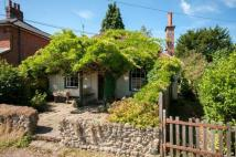 Bungalow for sale in Horsham Road, Holmwood...