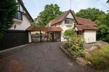 4 bed Detached property for sale in Hole Hill, Westcott, RH4