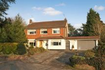 Detached property to rent in Brokes Crescent, Reigate...