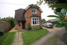 Dorking Road Detached property to rent