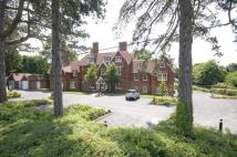 1 bedroom new Flat for sale in Oaks Road, Wray Common...
