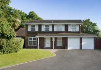 Detached property in Dunlin Close, RH1