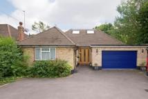 Bungalow for sale in Castle Drive, Horley, RH6