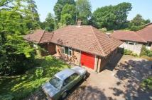 Bungalow in Balcombe Road, Horley...